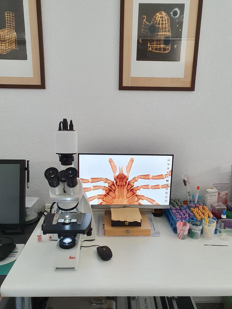Leica mikroskop_k